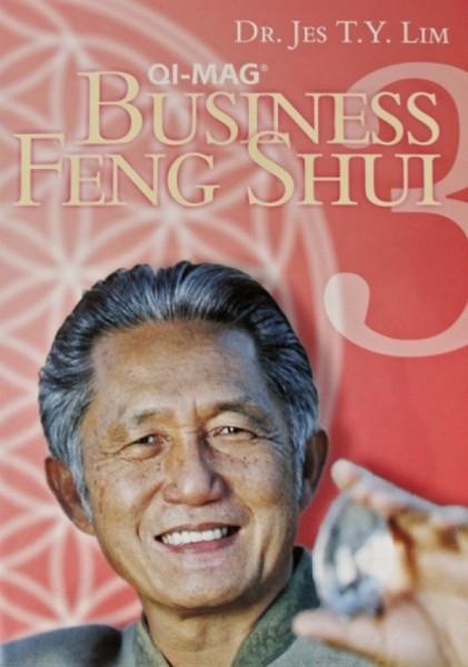 DVD – Feng Shui 3